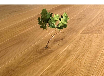 Environmentally Friendly Wood Floor Finishes From All In